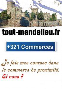 tout-mandelieu Mandelieu-La Napoule commerces centre ville et zones commerciales